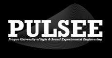 logo-pulsee-120.png